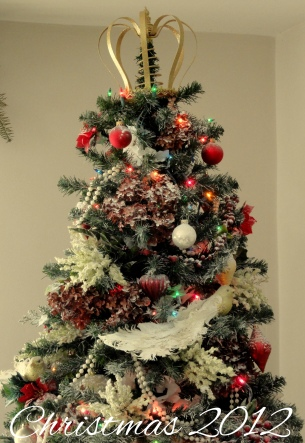 Christmas hydrangeas!