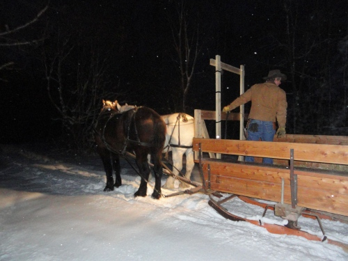 A family sleigh ride!