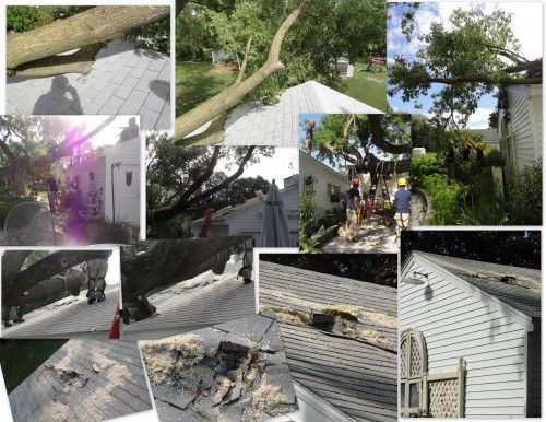 the tornado damage--