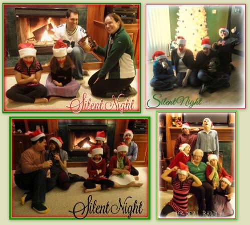 2014 Christmas theme for family pics!