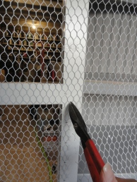 applying chicken wire--