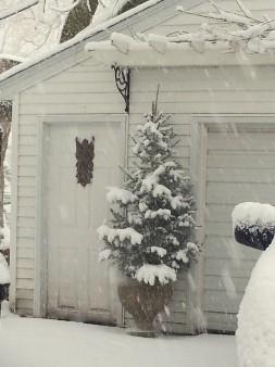 February snow storm-