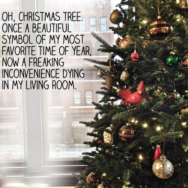 When Do U Take Down A Christmas Tree