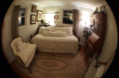 ~the FISH EYE lens attachment