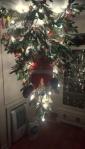 the kiddo's tree!