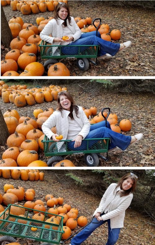 -at the Pumpkin Patch!