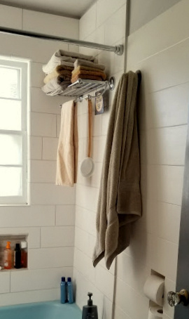 -a towel rack in the shower!